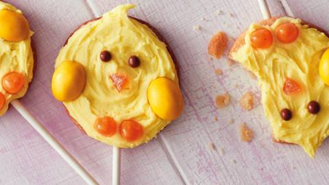 Chick biscuit pops